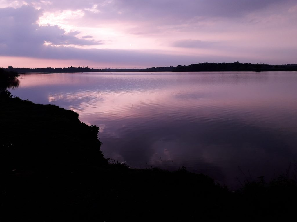 Sunset at Alton Water, Suffolk
