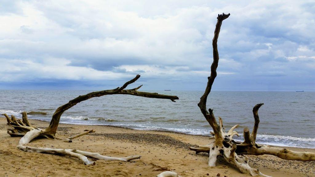 the beach at Covehithe, Suffolk