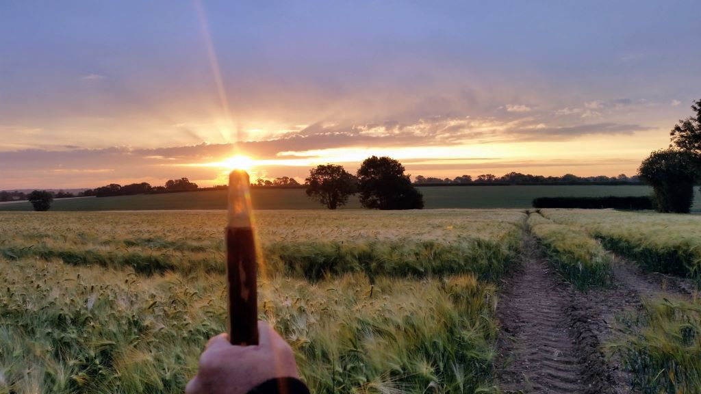 sunrise summer solstice 2020 with crystal tipped staff